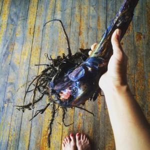 root balls